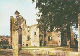 Dordogne        H526        Périgueux.Ruines Du Château Barriere - Périgueux