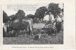 Pendant La Grande Guerre La Moisson Dans Les Plaines Du Poitou - France