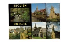 Cpm - 56 - SEGLIEN - Rives Du Scorff église Salle Polyvalente St Jean Locmaria Oratoire - 1993 - Autres Communes