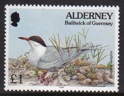 Alderney Single £1 Stamp From The 'Flora And Fauna' Definitive Set. - Alderney