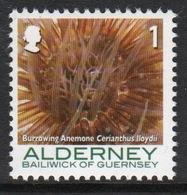 Alderney Single 1p Stamp From The 'Corals And Anemones' Definitive Set. - Alderney