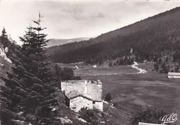 PIERRE SUR HAUTE - Massif Du Forez - Dépt 42 -  Vallée Du Fossat Ou Prédaval - Photo Véritable - Zonder Classificatie