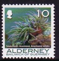 Alderney Single 10p Stamp From The 'Corals And Anemones' Definitive Set. - Alderney