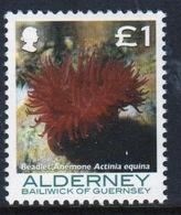 Alderney Single £1 Stamp From The 'Corals And Anemones' Definitive Set. - Alderney