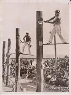 TREE FELLING CONTEST  AUSTRALIAN WOODMAN    20*15 CM Fonds Victor FORBIN 1864-1947 - Deportes