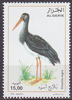 Timbre Neuf ** N° 1434(Yvert) Algérie 2006 - Oiseau, échassier, Cigogne Noire - Algérie (1962-...)