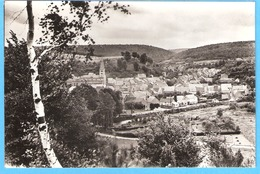 Belgique-Petigny-Couvin-Village Et L'Eglise St.Victor ,Vu Des Monts-Cliché Choquier, Photo Véritable-écrite En +/-1955 - Couvin