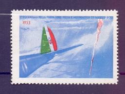 ERINOFILO CINDERELLA  FONDAZIONE DELL'AERONAUTICA 1933 (GIUGN190010) - Cinderellas