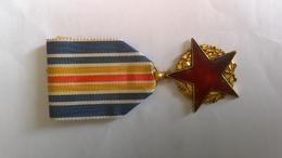 Médaille Des Blessés Militaires - Frankrijk