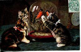 N°73329 -cpa Illustrateur : Chats -collection Oilette- - Katten