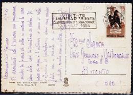 Trieste A, Cartolina Illustrata Per L'interno Con Sass. 200, (05101) - Storia Postale