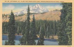 MT JEFFERSON, FROM HUNTS LAKE, OREGON. CT ART COLOR. CPA CIRCA 1950s - BLEUP - Etats-Unis