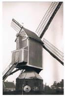 Poederlee - Molen Van Gijsel - Lille
