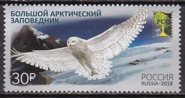 Russia, Fauna, Birds, Owls MNH / 2018 - Búhos, Lechuza