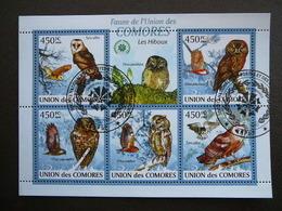 Owls. Eulen. Les Hiboux # Comoros # 2009 Used S/s # Birds - Hiboux & Chouettes
