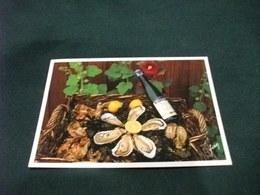 Conchiglia Shell  COQUILLES   CONCHAS  OSTRICHE E VINO  VIN DE PAYS HUITRES  FRANCIA - Ricette Di Cucina