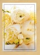 Carte Promo Perfume Card JOE MALONE * R/V * 15 X 21 Cm *** 1 EX - Parfumkaarten