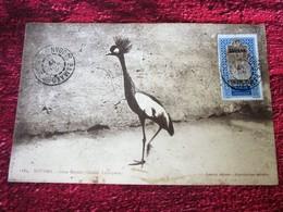 France Afrique Occidentale Française(ex-colonie & Protectorat)SOUDAN GRUE ROYALE(1894-1902)Lettre Carte Postale-Document - Sudan (1894-1902)