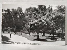 Saint Omer. Jardin Public - Saint Omer