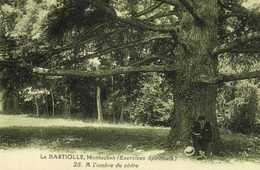 LA BASTIOLLE Montauban (Exercices Spirituels) A L'ombre Du Cèdre    RV - Montauban