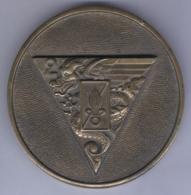 Médaille Du 2e Régiment Etranger Parachutiste - Esercito