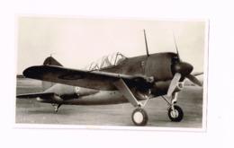 Aéronautique Militaire Belge.Brewster Buffalo. - Aviación