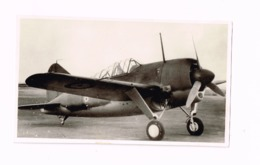 Aéronautique Militaire Belge.Brewster Buffalo. - Aviation
