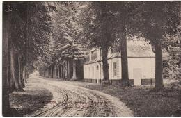 ENGHIEN PARC GUERRE 14 18 FIELDPOST  PASSED BY CENSOR 3269 TEXTE INTERESSANT - Enghien - Edingen