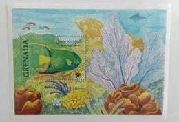 Grenada 2000** Bl.566. Angelfish MNH [6;100] - Fische