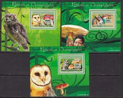 Guinea, Fauna, Birds, Owls, Mushrooms LUX S/S MNH / 2007 - Vögel