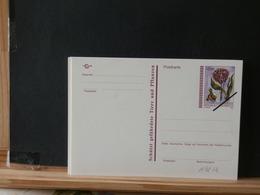 A9252  CP AUTRICHE   OBL. SPECIMEN  XX - Ganzsachen