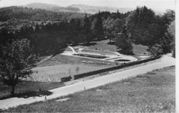 AK 0246  Hotelrestaurant Winterbach - Schwimmbad / Photo Glawatsch Um 1964 - Lilienfeld
