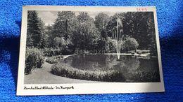 Herzheilbad Altheide Im Kurpark Poland - Polonia