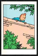 CP Tintin : Editions Hergé/Moulinsart Sundancer N° 009 ( Recto-Verso ) - Bandes Dessinées