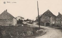 Wellin - Le Tribois - Pas Circulé - Edit. Veuve J. Banneux Banneux, Wellin - Wellin