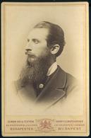 BUDAPEST 1880. Ca. Ellinger Ede és Testvére : Hoffmann Pál 1830-1907. Jogász, Egyetemi Tanár, Az MTA Tagja, Lawyer, Univ - Andere