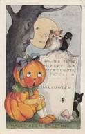HALLOWEEN , 1920 ; Pumpkin Head Girl , Owl , Crow, Spider, Black Cat & Live Tree - Halloween