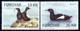 Europa 2019 - Féroés Foroyar - Oiseau (Cepphus Grylle - Guillemot à Miroir) ** - Birds