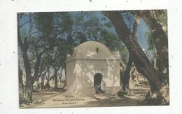 Cp, Algérie , BLIDA ,marabout De SIDI YACOUB ,  Bois Sacré , Vierge - Blida