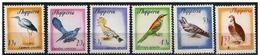 Albania/Albanie: Uccelli Diversi, Different Birds, Différentes Oiseaux - Altri