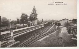 La Normandie-Briouze-La Gare Et Les Quais. - Briouze