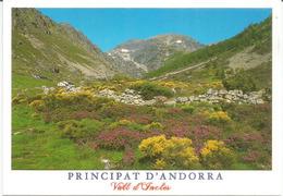 Andorra In Summer , Val D'Incles, Postcard Franked With Spanish Andorran Stamps + Andorra La Vella Postmark. - Andorra