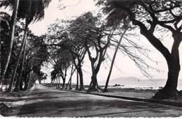 AFRIQUE NOIRE - GUINEE FRANCAISE - CONAKRY La Corniche - CPSM Dentelée Format CPA - Black Africa - Guinée Française
