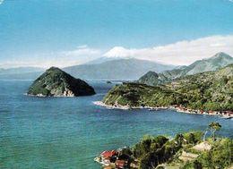 1 AK Japan * Eine Insel In Einem Einer Der Fünf Fuji-Seen Im Fuji-Hakone-Izu-Nationalpark Seit 2013 UNESCO Welterbe * - Japan