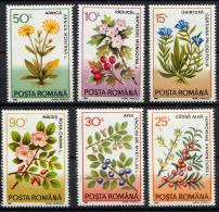 ROUMANIE ROMANA 1993, PLANTES MEDICINALES, 6 Valeurs, Neufs / Mint. R207 - Heilpflanzen