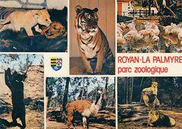 Cp , 17 , ROYAN , Environs , PARC ZOOLOGIQUE DE LA PALMYRE , Multi-vues - Royan