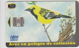#10 - COSTA RICA-25 - BIRD - 400.000EX. - Costa Rica
