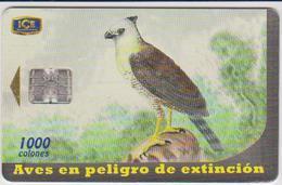 #10 - COSTA RICA-26 - BIRD - 400.000EX. - Costa Rica