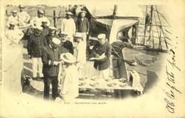 Bateau Marisn Inspection Des Plats / A 446 - Bateaux