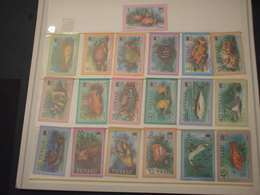 TUVALU - 1979 PESCI 18 + 1 VALORI - NUOVO(++) - Tuvalu